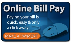 online pay